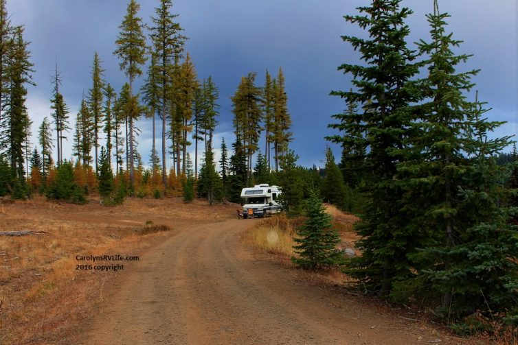 rv life in umatilla national forest