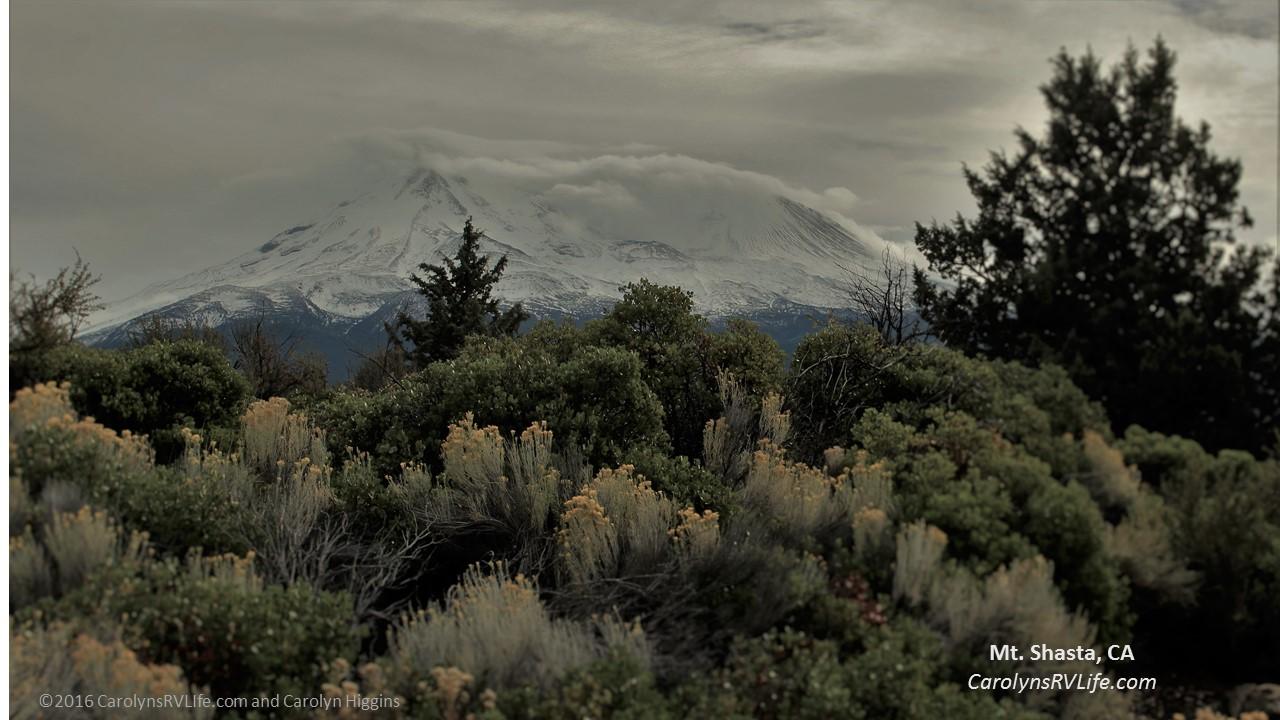 Mt Shasta vies