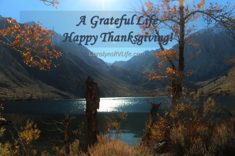 RV Life Thanksgiving scene